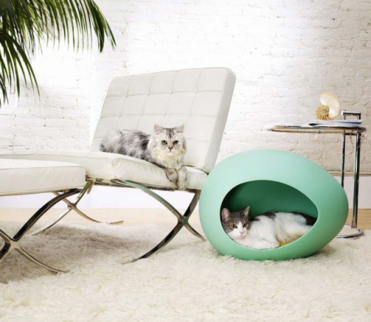 unique-modern-furniture-for-your-pets-room